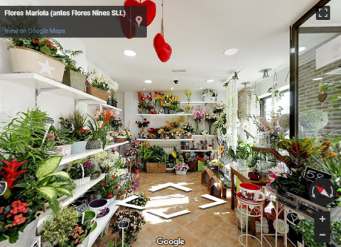 Madrid Virtual Tours – Mariola floristería