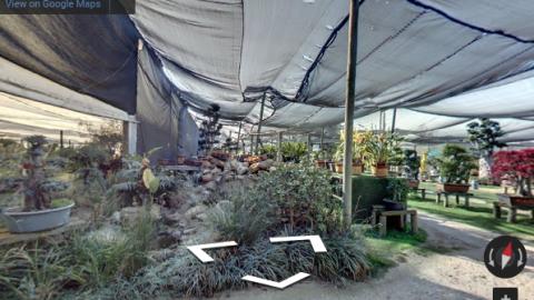Johannesburg Virtual Tours – Sawasdee Plants and Orchids