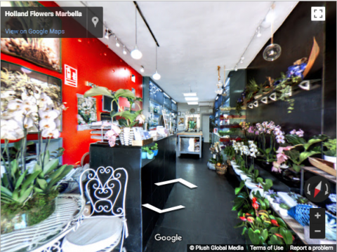 Marbella Virtual Tours – Holland Flowers