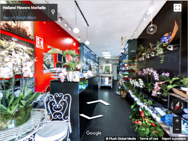 Marbella Virtual Tours - Holland Flowers