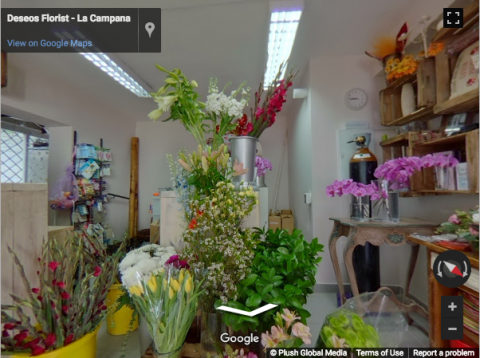 La Campaña Virtual Tours – Deseos Florist