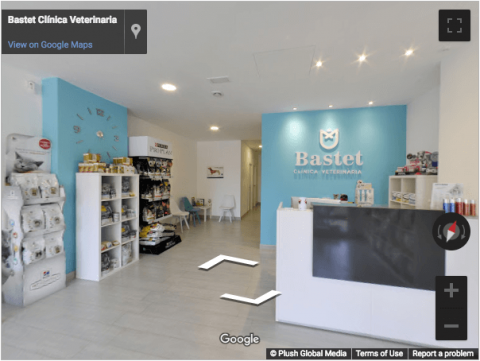 Tarragona Virtual Tour – Bastet Clinica Veterinaria
