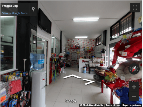 Madrid Virtual Tours –  Fraggle Dog Peluqueria Canina